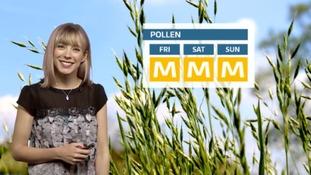 The latest pollen forecast