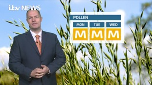 Pollen: East Midlands Latest Update
