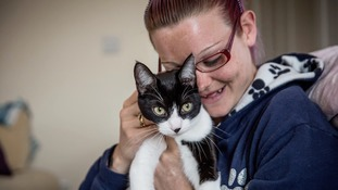 Is this Britain's most caring cat?