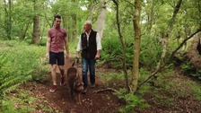 ITV News Anglia has been discovering the hidden delights of walking in the East Anglian countryside.