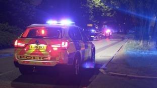 Woman dies after car ploughs into pedestrians
