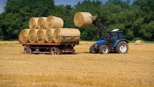 Bale carting after harvest