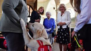 Clare Guest, the founder of Medical Detection Dogs speaks to the Queen and the Duchess of Cornwall