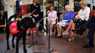 The dogs which showed the Queen and Camilla how they can sniff out cancer