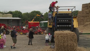 Open Farm Sunday: Raising awareness about how and where food is produced