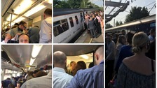 trains collage