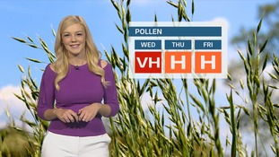 Pollen Count: Remaining very high today