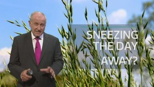 Sneezing the day away? Bob explains why