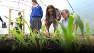From wellies to bellies: Teaching children to grow their own healthy food