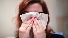 Record numbers of people are suffering from hay fever