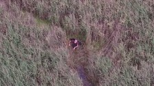 The moment the police drone spots Peter trapped in a dense reed bed