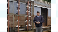 Caerphilly man in housing row could be 'forced to cull' homing pigeons