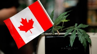 Canada passes bill to legalise recreational cannabis