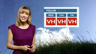 The latest pollen forecast