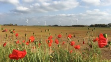Poppies and wind turbines