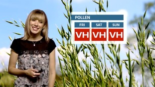 The pollen forecast for the coming days