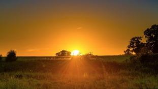 Anglia Weather: dry with warm sunshine