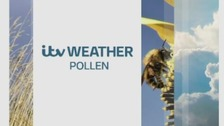 Ross Hutchinson has the latest pollen forecast