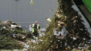 Councils rake in millions from garden waste collections, research shows