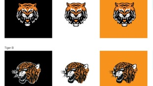 Pick your tiger: Hull City ask fans to vote on new crest design