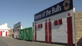 Bulls picture