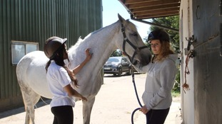 How horses are helping youngsters battle mental health issues