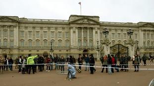 Buckingham Palace Tasering