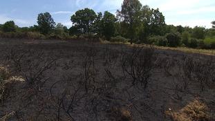Half of Norfolk open fires deliberate