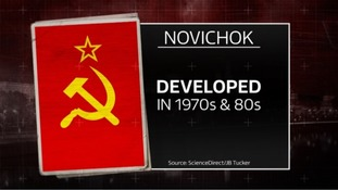 Novichok is a deadly substance that attacks the central nervous system.