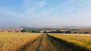 Hinxton in Cambridgeshire