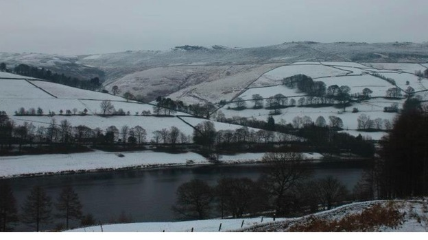 Derwent in the snow