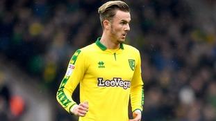 Maddison Norwich