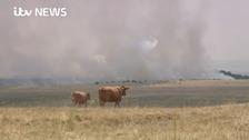 People living near MoD's Salisbury Plain firing range complain of acrid smoke