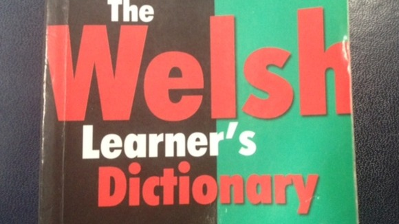 Welsh Learner's Dictionary