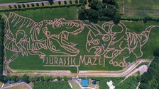 The dinosaur-themed maze pictured from above.