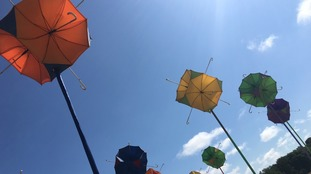 The umbrellas in this art installation are unlikely to be needed at the 2018 Latitude.