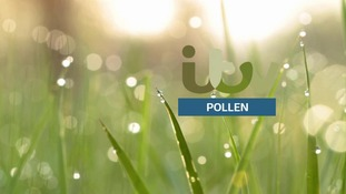 VIDEO: Sunday's Pollen Count for the North East