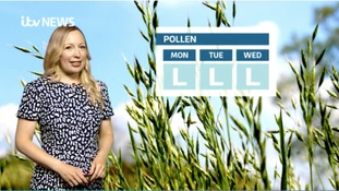 Good news for hayfever sufferers!