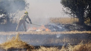 A firefighter beating a fire out at Corpusty in north Norfolk.