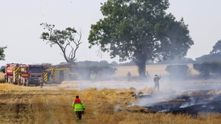 Firefighters in Norfolk were dealing with more than a dozen field fires on Sunday alone.