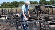 Pigeons and hens killed after fire destroys Newcastle allotments