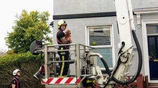 A puppy was rescued from a roof in Plymouth