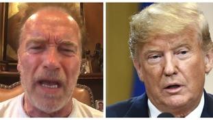 Arnold Schwarzenegger labels Donald Trump a 'little noodle' following Vladimir Putin press conference
