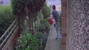 Police hunt gormless gnome thief who fell through garden fence