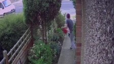 The suspect grabs the gnome before falling through a nearby fence