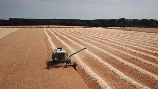 The dry summer is also causing a headache for some of the East's farmers.