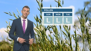 Wales pollen: levels staying lower as season ends