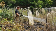 Firefighters tackle blaze at Southampton cemetery