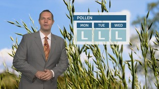 Pollen Count: Levels staying low over the next few days