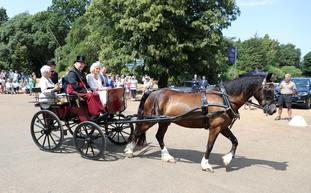Camilla and Dame Judi ride in a horse and carriage
